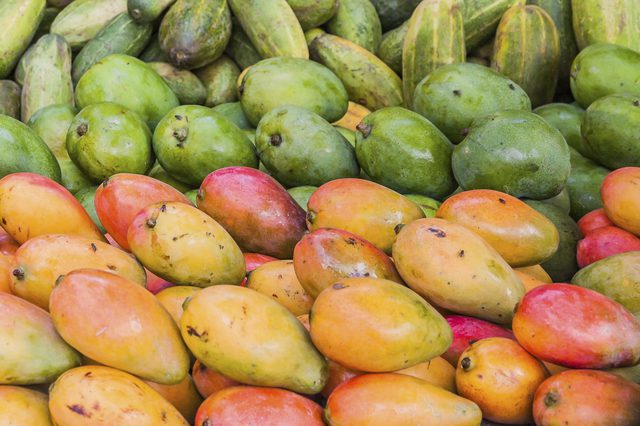 What You Should Know About African Mango Everlast Sports Nutrition